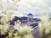Июньская прогулка по Биробиджану_10