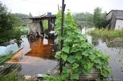 Потоп в поселке Амурский