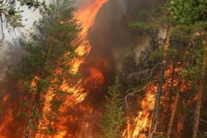 Авиалесоохрана: Жара иветер недают результативно тушить пожары вЯкутии
