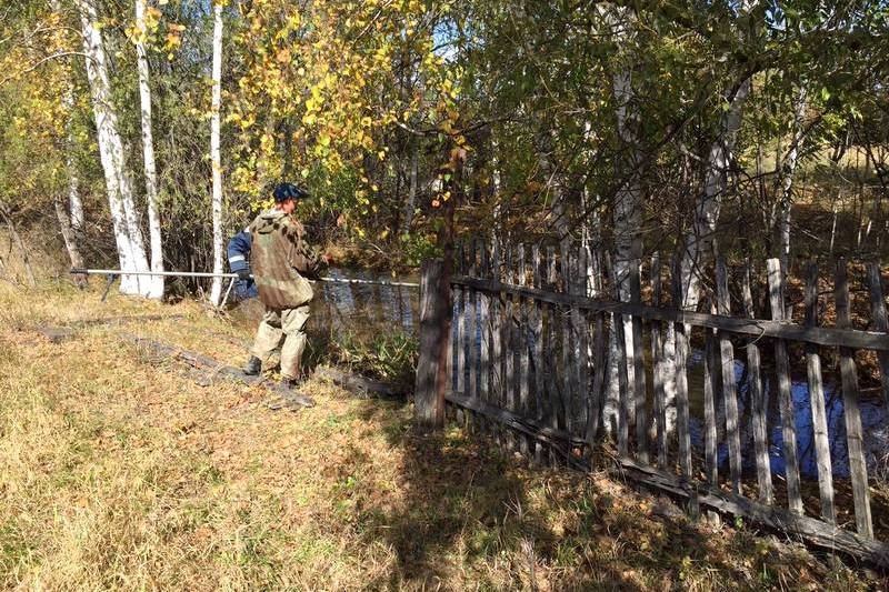 ВЕАО отыскали останки, которые могут принадлежать пропавшей девочке