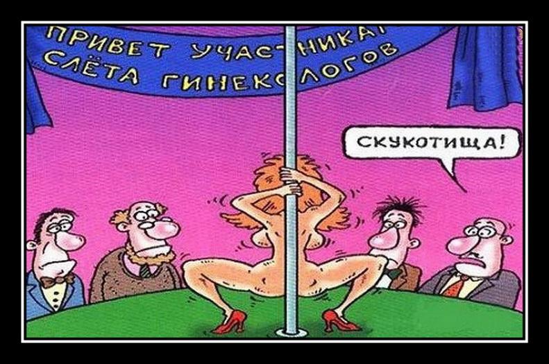 Открытки прикольные веселые с юмором 573